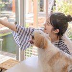 ペットと一緒に住みやすい家にしたい!どうやってリノベする?